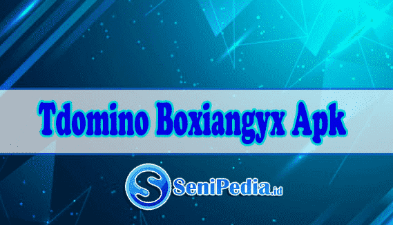 Cara-Memakai-Alat-Tdomino-Boxiangyx